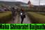 """Maha Shivaratri 2018 """"Baijnath Temple""""Himachal Pradesh"""